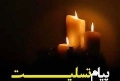 پیام تسلیت استاندار آذربایجان شرقی به مناسبت شهادت دانشمند برجسته شهید محسن فخریزاده