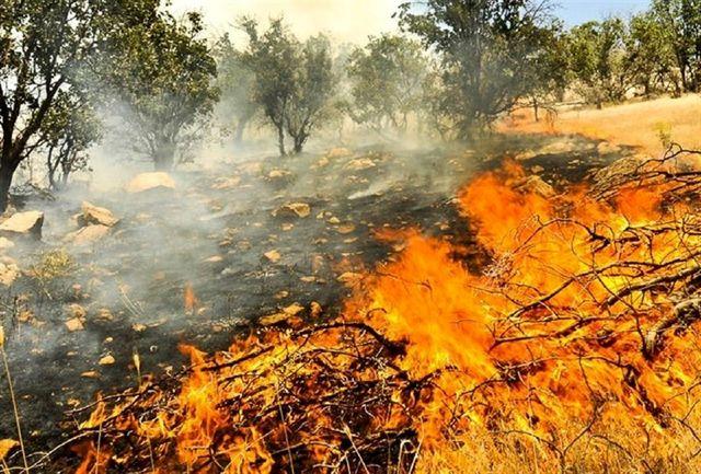 جولان آتش در توسکستان/ حریق تا 4 هکتار پیش رفته است
