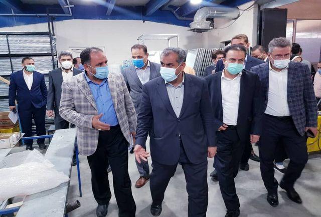 استاندار قزوین از چند واحد صنعتی در آبیک بازدید کرد