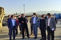 معاونین قضایی دادستانی از گمرک تهران بازدید کردند