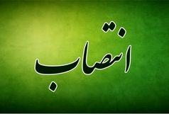 انتصاب مدیر روابط عمومی شورای اسلامی شهر بندرعباس