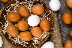 آیا شستن تخم مرغها کار درستی است؟