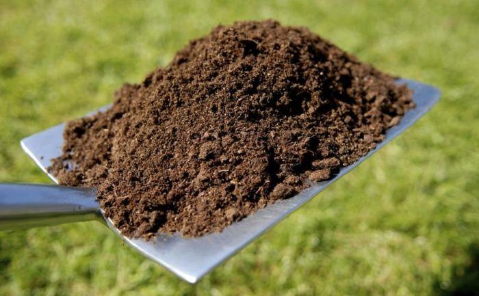 آییننامه اجرایی قانون «حفاظت از خاک» در دستور کار دولت قرار میگیرد