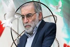 پیام تسلیت باشگاه فولاد خوزستان در پی شهادت دانشمند هستهای کشورمان