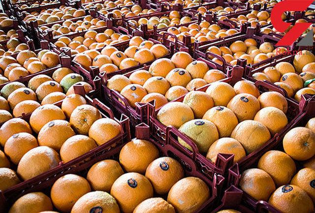 توزیع گوشت مرغ منجمد استاندارد ،پرتقال و سیب با قیمت مصوب همچنان ادامه دارد