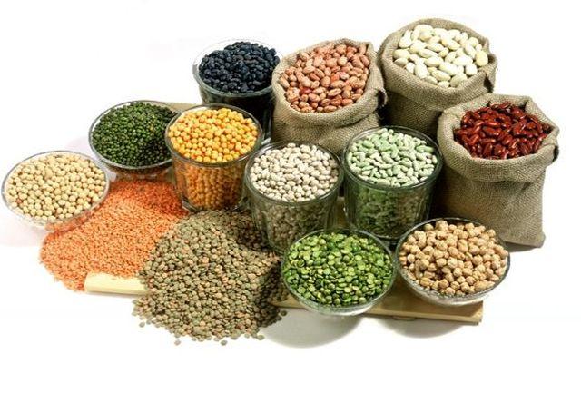 پیش بینی تولید نزدیک به ۵۰ هزار تن حبوبات در آذربایجانغربی
