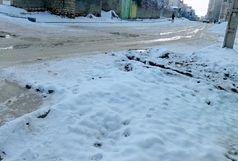 یخ زدگی شدید برخی خیابانهای یاسوج / شهروندان با دقت تردد کنند