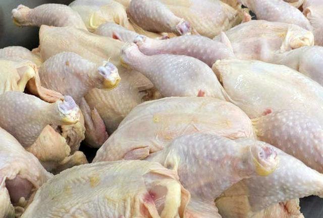 قیمت هر کیلو گوشت مرغ 11500 تومان است/ گرانفروشان تحت پیگرد قرار میگیرند