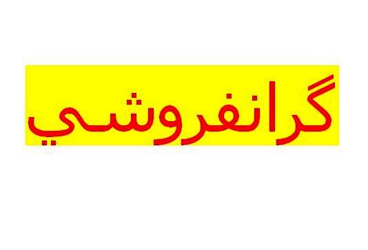 دستگیری عامل گرانفروشی ماسک در رشت
