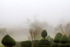 استان قزوین مه آلود شد/ سامانه بارشی 5 شنبه از قزوین می رود