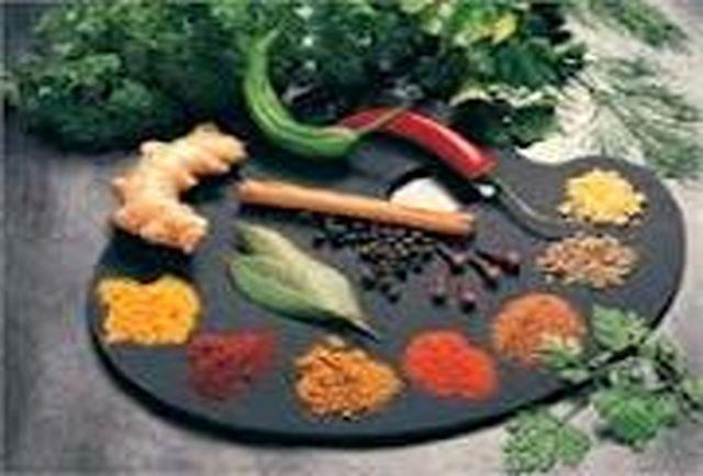 همایش ملی گیاهان دارویی در بجنورد آغاز بهکار کرد