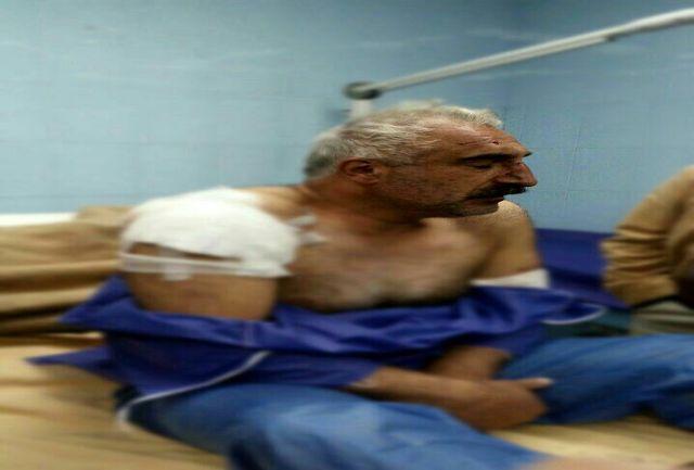حمله پلنگ به چوپانی در شفت