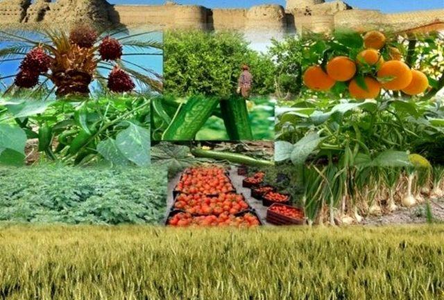 تمدید مهلت ثبتنام تسهیلات مشاغل کشاورزی آسیب دیده از کرونا در آذربایجان غربی