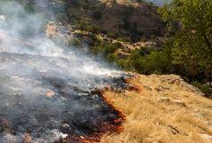 مهار آتش سوزی در منطقه حفاظت شده بوشهر