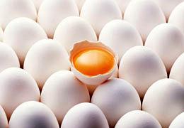 قیمت هر شانه تخممرغ تعیین شد