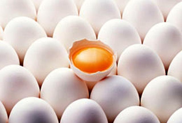 یک شانه تخم مرغ 4هزار و 500تومان
