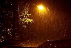 نوار شمالی کشور تا اواسط هفته بارانی است