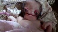 با ترسناک ترین نوزاد جهان آشنا شوید +عکس