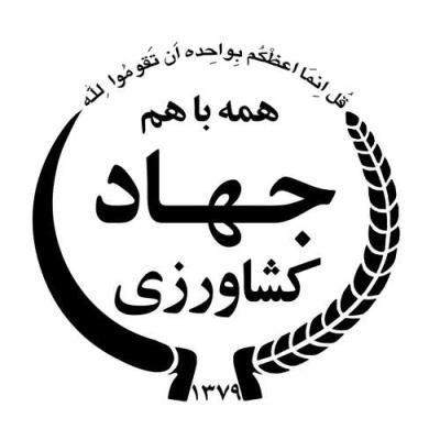 52 هزار تن مرغ مازاد مرغداران ۲۹ استان خریداری شد