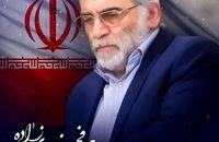 بیانه جامعه ورزش و جوانان  و بسیج ورزشکاران کردستان در محکومیت ترور دانشمند هسته ای کشور