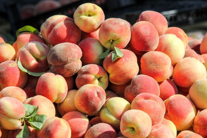 برداشت بیش از ۱۷۰ هزارتن میوه هسته دار از باغات آذربایجان غربی