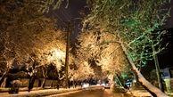 16 استان کشور درگیر برف و باران سه روزه