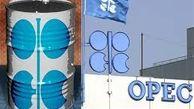 اوپکیها در نوامبر روزانه ۲۹ میلیون و ۴۴۴ هزار بشکه نفت تولید کردند
