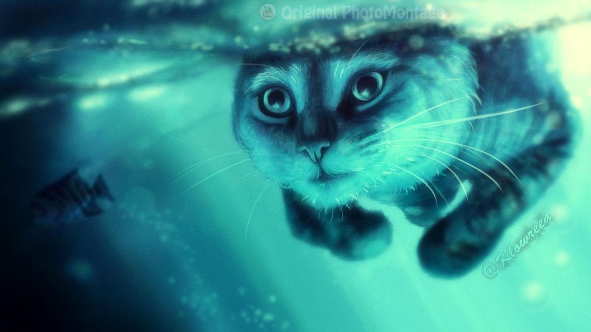 داستان کوتاه «گربه در آب»