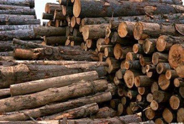 کشف 12 تن چوب جنگلی قاچاق در سیاهکل