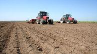 تحقق ۵۹ درصدی کشت گندم پاییزه در آذربایجان غربی