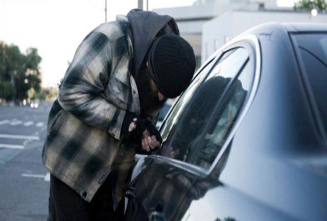هوشیاری مالک خودرو باعث دستگیری سارق شد