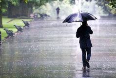 ممنوعیت اهدای عضو از ایرانی به خارجی / جان باختن ۹ تن تحت تاثیر بارش/ لزوم کوچک سازی دولت مرکزی به وسیله شوراها