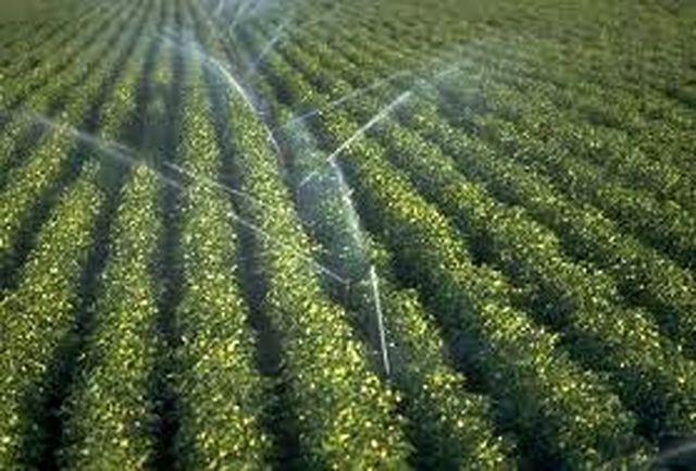اجرای سیستم های آبیاری تحت فشاردرسطح ۱۲۰ هزار هکتاراز اراضی کشاورزی آذربایجانغربی