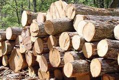 کشف 10 تن چوب جنگلی قاچاق در املش