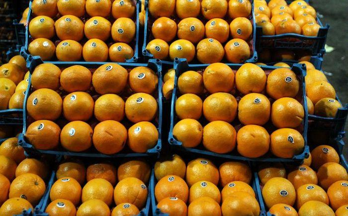 کاهش قیمت پرتقال شب عید به 5400 تومان/ توزیع انجام می شود