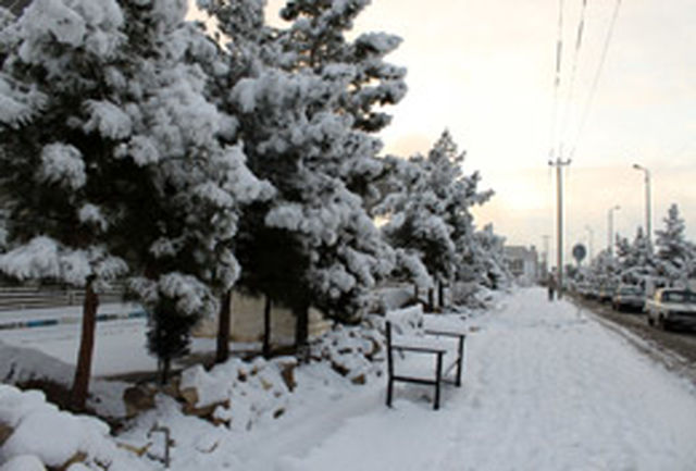 بارش برف و تعطیلی مدارس سبب شادی دانشآموزان سمنانی شد