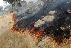 هرگونه خبر دستگیری یا آزادی عاملان آتشسوزی خائیز تکذیب شد