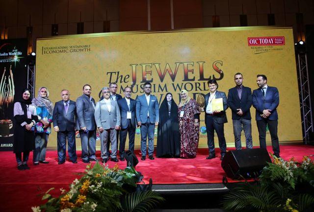جایزه کنفرانس تجارت بینالملل سرمایهگذاری جهان اسلام به بانک ایرانی رسید
