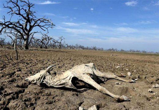 چند درصد از جمعیت ایران تحت تاثیر خشکسالی قرار دارد؟