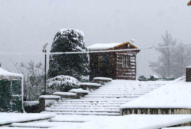 گزارش تصویری از بارش برف در لاهیجان