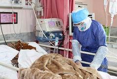 آخرین و جدیدترین آمار مبتلایان و بهبود یافتگان ناشی از کرونا استان خوزستان تا ۱۱ خرداد ۹۹/ رکورد روزانه فوتی ها شکسته شد
