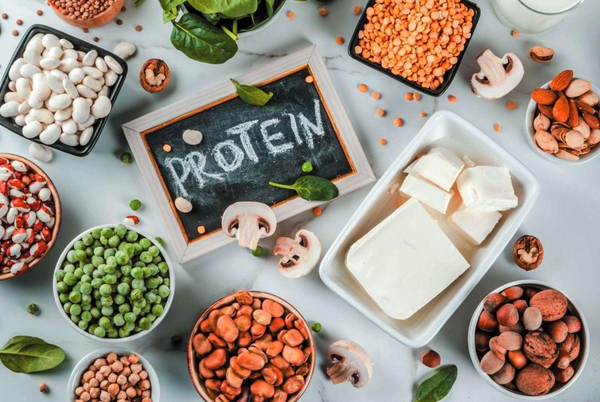 آشنایی با بلاهایی که کمبود پروتئین بر سر بدن می آورد