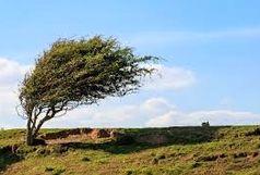 ادامه وزش باد شدید در خراسان رضوی تا آخر هفته جاری