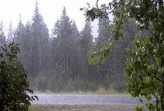 گسترش سامانه بارشی از شمال به مرکز و جنوب کشور