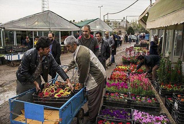 معضلات بازار گل شهید محلاتی / تسریع توافق میان دستگاهی برای حل معضلات بازار گل شهید محلاتی