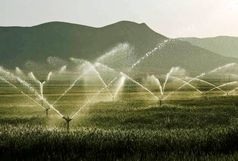 63 هزار و 438 هزارهکتار از اراضی کشاورزی آذربایجان غربی به سیستم های آبیاری نوین تجهیز شد
