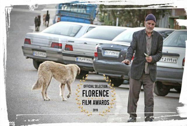 «باران برای تو میبارد» در جشنواره بین المللی Florence Film Awards ایتالیا
