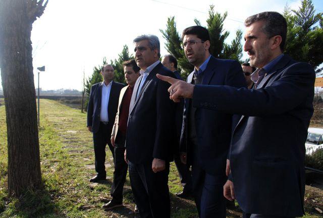 نخستین مرکز آموزشی کشت بدون خاک در گیلان افتتاح شد