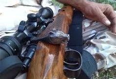 ۱۲ قبضه سلاح قاچاق در حوزه محیطزیست شاهرود کشف شد