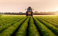 ارزش هر تن محصولات کشاورزی و غذایی صادراتی بالای ۲ هزار دلار بوده است